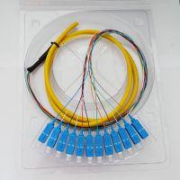 12芯SC束状尾纤 SC尾纤 SC光纤尾纤(1.5米 SM)电信级质量保证