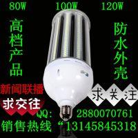 LED路灯外壳 80W庭院灯外壳 玉米灯外壳 投插灯外壳 铝合金+鳍片