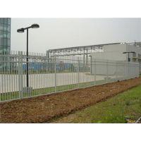 天津护栏网、知名企业卓恒金属网、学校护栏网