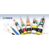 安徽天康集团厂价直销BPYJVTP2变频电缆