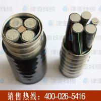 天津特变电缆津亚牌AC90 YJHLV联锁铠装铝合金电缆