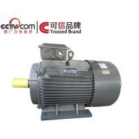 金力特、龙口YE2高效电动机、YE2高效电动机节能