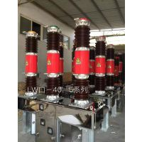 *LW36-40.5*LW36-40.5*电站专用断路器