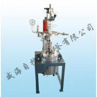 加氢反应釜,自控反应釜,聚合加氢反应釜
