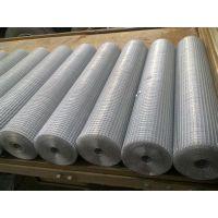 特价304材质不锈钢电焊网|1米宽不锈钢电焊网