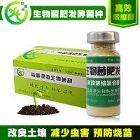 菜籽饼沤肥剂腐熟生物肥预防虫害蔬菜大棚赤峰