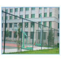 安平仁光供应低碳钢丝浸塑围栏网