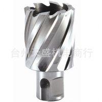 高速钢钢板钻头(取芯钻头)扩孔钻头 打孔钻空心钻头12-60mm