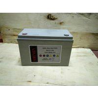 汤浅免维护蓄电池NPL12-12代理商