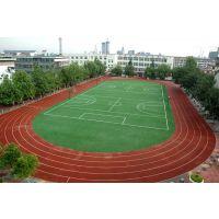 湖南幼儿园中小学户外运动塑胶跑道工程施工