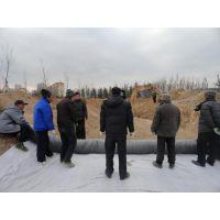 潮州防渗膨润土防水毯、汉高建材