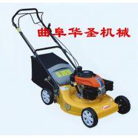 园林修剪绿篱机 二冲程汽油修剪绿篱机 草坪修剪机 绿篱机