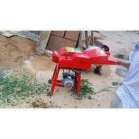 鼎信直销新型玉米秸秆铡草机 秸秆铡草粉碎机 青贮饲料机械