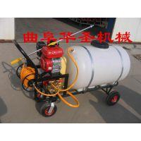 手推喷雾器 7.5马力汽油机动力喷雾机 农药打药机 小型植保