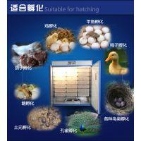 太阳谷全自动孵化机小型家用型鸡鸭鹅2112枚孵蛋器孵化箱