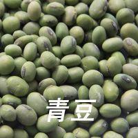 厂家直销 青豆 豆类杂粮 有机五谷杂粮 上海杂粮批发