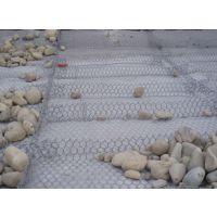 生态铁丝固滨石笼[安平]河道护坡固滨网笼【金照】