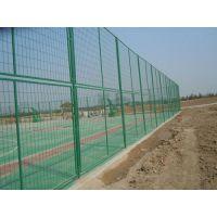 安平驰泰厂家供应球场铁丝围栏网