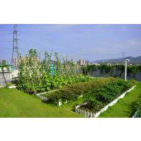 屋顶立体绿化工程_学校劳动教育实践基地建设_都市农夫