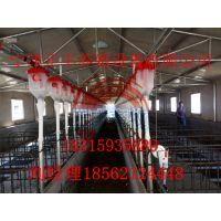 母猪定量料线系统安装使用 配件批发价格
