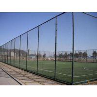 河北安平球场围栏网生产,铁丝网球场,浸塑焊接,安装一体13784187308李经理