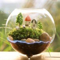 微景观生态瓶 三足多肉花瓶 苔藓瓶批发