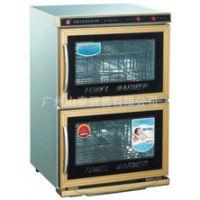 康庭 金兔系列电热毛巾柜 双门二层透明保洁柜 KT-RTD-36A-2