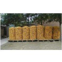安平供应镀锌玉米网厂家现货直销