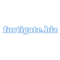 飞塔FortiGate 300D防火墙 FortiGate 500D防火墙配置