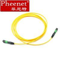 Pheenet菲尼特MPO12芯单模万兆 MTP光纤线