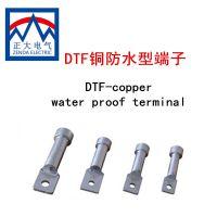 厂家供应:DTF-95mm2防水铜端子 镀锡铜线鼻子 DT-F接线端子