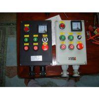 厂家直销BXM(D)-防爆动力(照明)配电箱钢铁板焊接