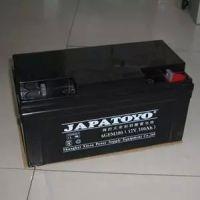 全新东洋蓄电池6-GFM-100东洋12V100AH铅酸免维护UPS阀控式蓄电池