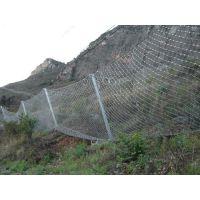 看主动边坡防护网图片/质量/价格到四川《蜀安》浸塑防护网