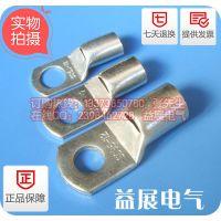 SC70-8,SC70-10,SC70-12,镀锡窥口铜线鼻子,线鼻子规格,益展电气