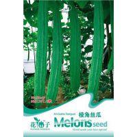 可混批 炫酷表情 绿色种植 创意园艺花卉花籽 棱角丝瓜种子8粒