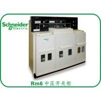 供应施耐德RM6-IIIII