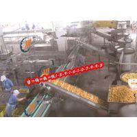 专业生产-水果罐头设备输送带,滚筒爬坡输送带,提升机传送带