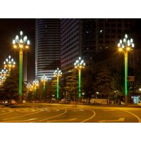 10米玉兰灯什么价格,室外景观灯厂家咨询 中山创赢照明厂