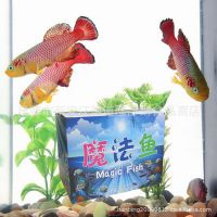 魔法鱼豪华版套装 水+土=鱼 太空小鱼 热带鱼批发 带鱼缸 魔法鱼
