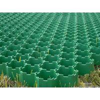 供应广州市从化植草格厂家报价,从化植草格施工工艺方案提供参考