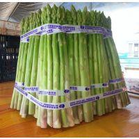 供应国产2000-5f1-高产芦笋种子