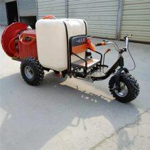 手推式汽油打药机 喷雾器 富兴框架高压喷雾器