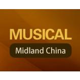 2017第五届武汉国际乐器展览会
