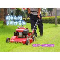 农用背负式割灌机割草机 背负式割灌机批发零售 植保机械大全