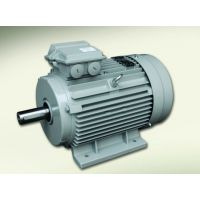 厂家批发零售德东变极双速电机 (YD-132S-4/2 4.5KW/5.5KW)