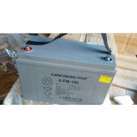 南都蓄电池6-FM-100南都蓄电池12v100ah价格(质保三年)