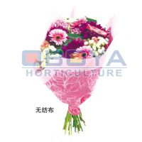 青岛欧勃亚设计生产 鲜花包装袋 鲜花袋