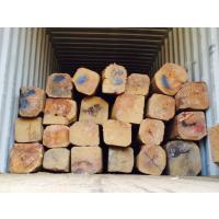 越南红木(紫檀木)规格20%(25-29cm直径)80%(30-60cm)一个柜。