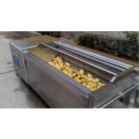 诸城正康厂家直销土豆清洗机毛辊毛刷清洗设备根茎类红薯清洗可定制